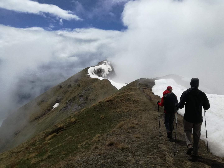 Bassa Val Susa: caprioli volpi e natura