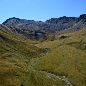 trekking alpi occidentali punta nera escursioni camminate vette 3000 metri